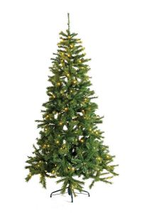 Božićno drvce 215 cm